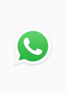 WhatsApp Logo 1 300